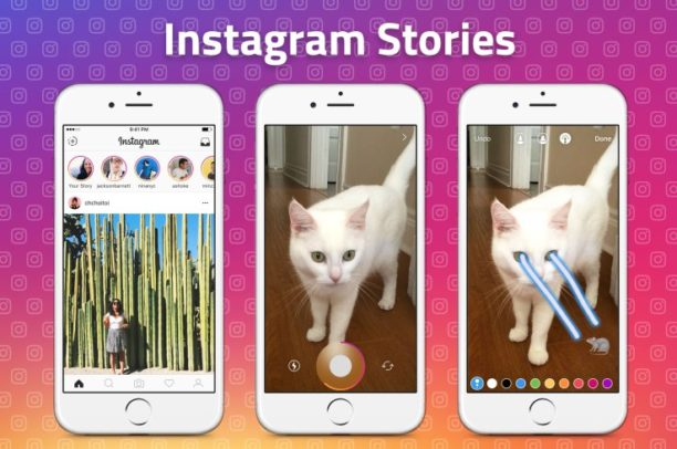 stories d'instagram avec un chat tirant des lasers